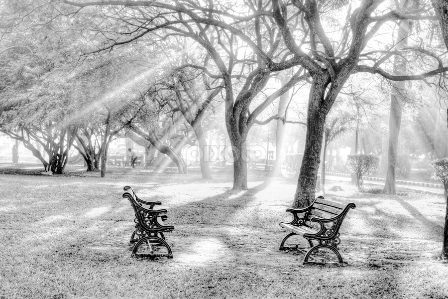 by Bharathkumar Hegde - City,  Street & Park  City Parks