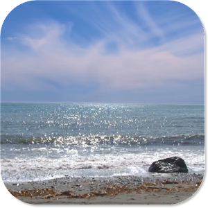 Beach Live Wallpaper PRO For PC Windows 7810 And Mac