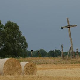 by Radomir Perin-Rasa - Landscapes Prairies, Meadows & Fields