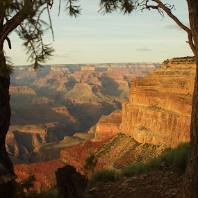 Window on the grand canyon by Karl Jones - Landscapes Mountains & Hills (  )