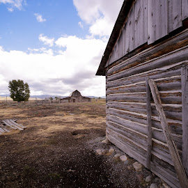 Teton Barns by Nancy Merolle - Buildings & Architecture Decaying & Abandoned ( old, buildings, barns, architecture, tetons, abandoned, mormons )