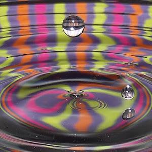 drops Jan 11 2012f106.jpg