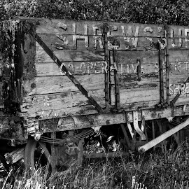 Wagon weary by Stephen Crawford - Transportation Trains ( railway, black+white, engine, coal, dalmellington, disused, trains, machines, steam,  )