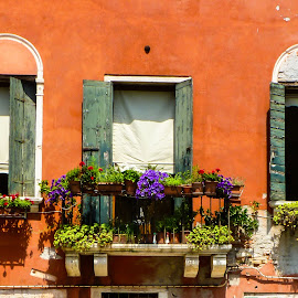 Venice by Sagar Jogadhenu - Buildings & Architecture Other Exteriors ( red, colorful, venice, windows, italy )