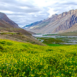 Colourful Kaza by Tamal Das - Landscapes Mountains & Hills ( mountain, kaza, landscape, himalayas, river,  )