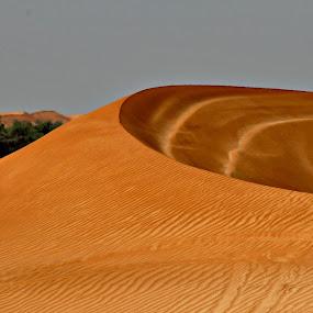 Al Ain Dune by Danette de Klerk - Landscapes Deserts ( sand, dunes, desert, al ain, dune, landscape, united arab emirates )