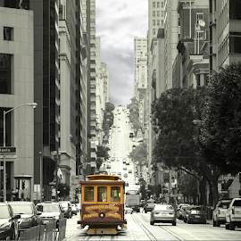San Francisco by Jimmy Alba - City,  Street & Park  Historic Districts ( canon, cars, buildings, san francisco, city )