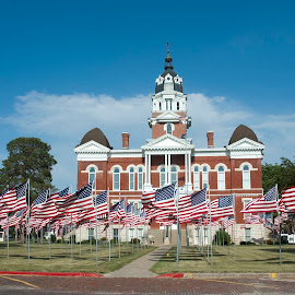 Tecumseh Ne town square by Gayle Mittan - Public Holidays July 4th ( rememberence, flags, america, tecumseh, veterans day, memorial day, military, holiday, small town, soldiers, patriotic, veterans, nebraska, courthouse, celebrate )
