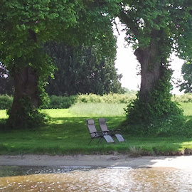in the nature... by Liliana Lesu - City,  Street & Park  Vistas ( water, two, old trees, nature, chairs, green, trees, norway )