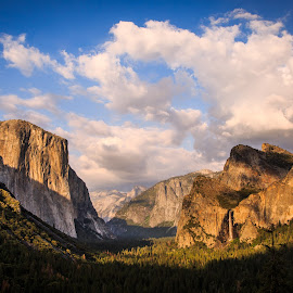 Yosemite National Park by Gannon McGhee - Landscapes Mountains & Hills ( park, yosemite, california, national, view, tunnel )