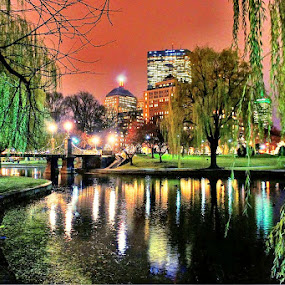 Boston Public Garden by Heather Walker - City,  Street & Park  City Parks