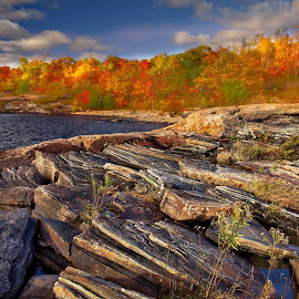 by Tim Harding - Landscapes Waterscapes ( colour, fall, parry sound, lake, landscape )