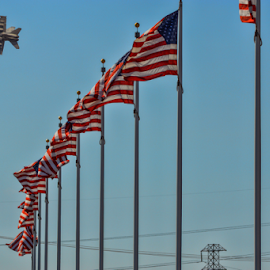 Mirimar National Cemetery, Mirimar, California by Tom Anderson - City,  Street & Park  Street Scenes ( aviation, california, marines, flying leatherneck aviation museum, m )