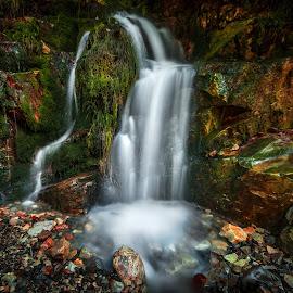 by Alex Jitaru - Nature Up Close Water