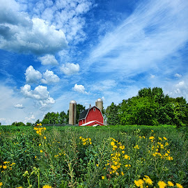Perfectly Summer by Phil Koch - Landscapes Prairies, Meadows & Fields ( vertical, farmland, travel, yellow, leaves, sky, barn, nature, tree, weather, perspective, flowers, light, orange, art, twilight, agriculture, journey, horizon, portrait, environment, dawn, season, serene, trees, lines, natural, inspirational, wisconsin, ray, country living, beauty, landscape, phil koch, spring, sun, photography, farm, horizons, country life, inspired, clouds, office, park, heaven, green, scenic, morning, shadows, field, red, wild life, blue, sunset, amber, meadow, summer, beam, earth, sunrise, garden )