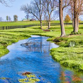 Kentucky Horse Farm by Eugene Linzy - Landscapes Prairies, Meadows & Fields ( fence, creek, trees, spring, kentucky )