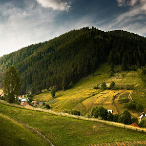 Utusoiu, Harghita by Eduard Moise - Landscapes Travel ( hills, sky, sunset, dramatic, summer, forest )