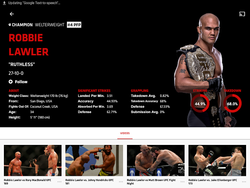 UFC screenshot 6