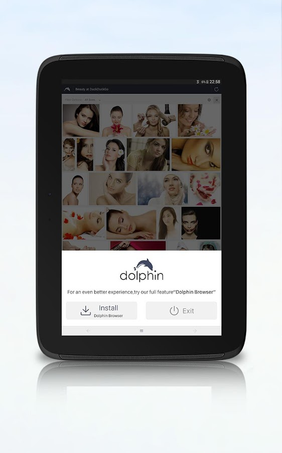 Dolphin Zero Incognito Browser - Privater Browser android apps download