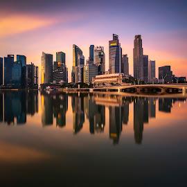 by Gordon Koh - City,  Street & Park  Skylines ( reflection, city, dusk, night, asia, city park, skyline, singapore, shenton, modern, urban, symmetry, nightscape, cityscape, modern city, esplanade, blue hour, lake, park, mbs )