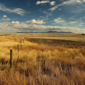 Mayhem Biking Trail by Shane Vandenberg - Landscapes Prairies, Meadows & Fields