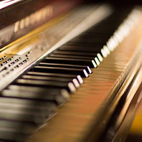 88 Keys by Torey Searcy - Artistic Objects Musical Instruments