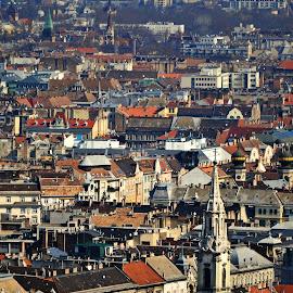 Budapest day 2 by Mladjan Pajkic - City,  Street & Park  Neighborhoods ( budapest, building, roofs, cityscape, city )