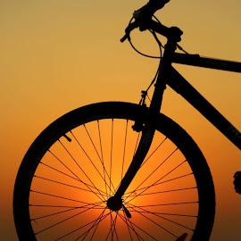 Sun in the wheel by Suryakanta Sahoo - Transportation Bicycles
