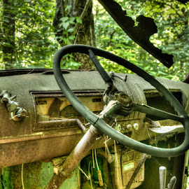 Inside the Abandoned Car by Chris Cavallo - Transportation Automobiles ( car, old, old car, maine, rusty, rust, woods, abandoned )