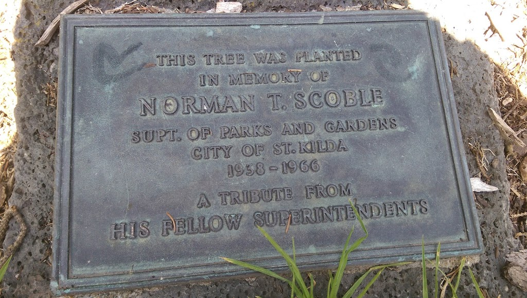 Plaque is located under a tree in the St Kilda Botanical Gardens. This tree was planted  in memory of Norman T. Scoble Supt. of Parks and Gardens City of St. Kildat 1938-1966 A tribute from His ...
