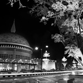Bangunan Alat Kebesaran Diraja by Mohamad Sa'at Haji Mokim - Buildings & Architecture Public & Historical ( black and white, pwcbuilding )