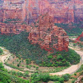 Zion  by Alexz Hernandez - Landscapes Caves & Formations ( mountains, cliffs, rock, zion, formation )
