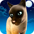 Game Meow! Cute Kitty Cat apk for kindle fire