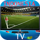 INDONESIA TV ONLINE APK