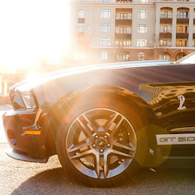 Shelby GT by Dayton Brown - City,  Street & Park  Street Scenes ( canon, car, mustang, nc, street, shelby, gt, winston salem )