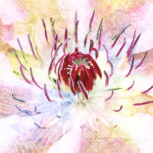 dreamy flower painted.jpg
