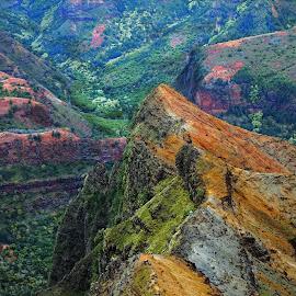 Waimea Canyon - Hawaii 2017 by Dee Haun - Landscapes Mountains & Hills ( kauai, waimea canyon, canyon, landscapes, mountains & hills, hawaii, 170608x8918e3 )
