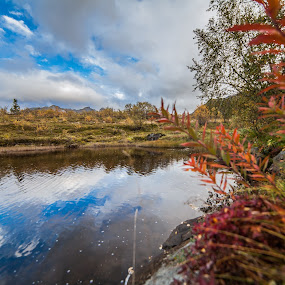 Fall in norway by Benny Høynes - Landscapes Prairies, Meadows & Fields ( canon, water, fall, landscapes, colours )