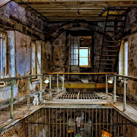 Abandoned prison by Ruth Sano - Buildings & Architecture Decaying & Abandoned ( cat, old, prison, decaying, abandoned )