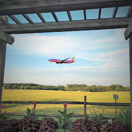 Airplane watching at BWI by Mary Gallo - Transportation Airplanes ( airport, plane, watching, trail, transportation )