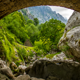 So grey and stony, old stone bridge by Jared Stahl - Landscapes Mountains & Hills ( stream, mountain, europe, waater, landscape, spain, revive, nature, asturias, emotions, peaks of europe, rocks, forests, earthly, peaceful, jade, green, mood, forest, quiet, scenic, relaxing, environment, trees, meditation, bridge, stones, the mood factory, renewal, natural, inspirational, river )