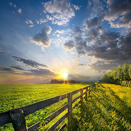 Bring Heaven Near by Phil Koch - Landscapes Prairies, Meadows & Fields ( wisconsin, ray, country living, phil   koch, landscape, spring, sun, life, sky, tree, nature, rail, weather, perspective, country life, horizons, flowers, light, wild, park, purple, heaven, twilight, art, horizon, shadows, field, fence, sunset, meadow, trees, beam, lines, sunrise, garden )