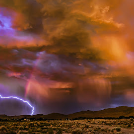 Desert Storm by Lee Molof - Landscapes Weather