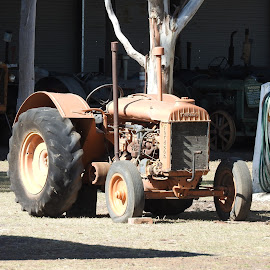 Old Farm Tractor by Estelle Du Plessis - Transportation Other