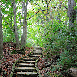 Stone Stairway by Marsha Biller - City,  Street & Park  City Parks ( stairs, park, path, stone pathway, woods )