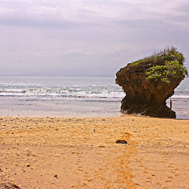 Santolo Beach by Mulawardi Sutanto - Landscapes Beaches ( garut, santolo, west java, beach, travel )