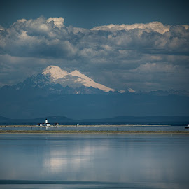 Mt. Baker from the Dungeness Spit National Wildlife Refuge by Brent Morris - Landscapes Waterscapes