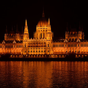 Hungarian Parliament by Zsuzsi Zsidai - Buildings & Architecture Other Exteriors ( parliament, hungary, budapest, danube )