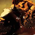 Receitas de Tortas Doces | FoodBait