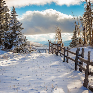 Snow mountain fence.jpg